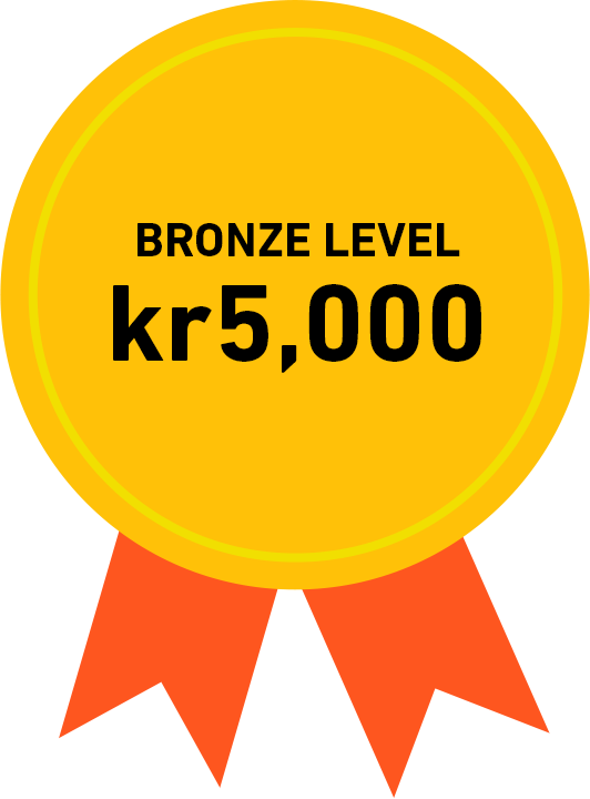Bronze Level: kr5,000