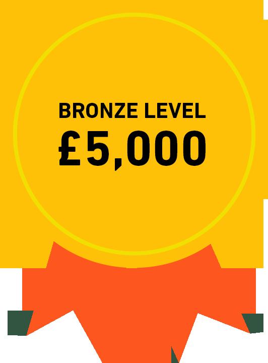 Bronze Level: £5,000