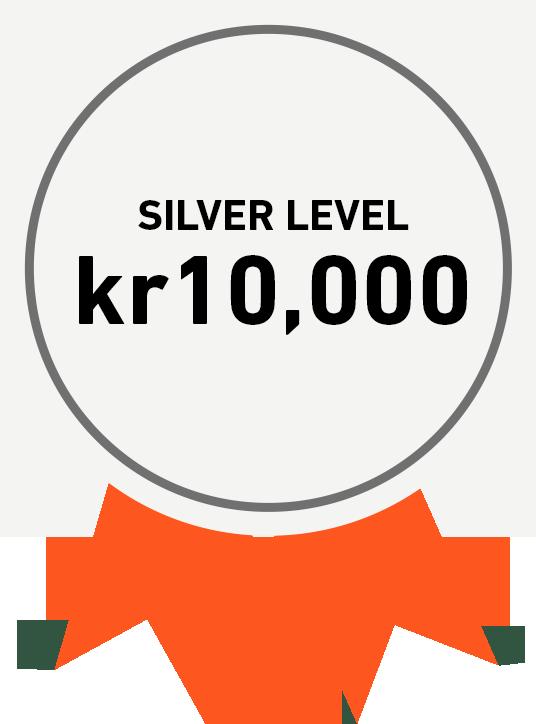 Silver Level: kr10,000
