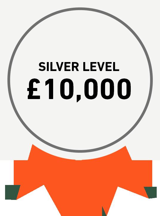 Silver Level: £10,000